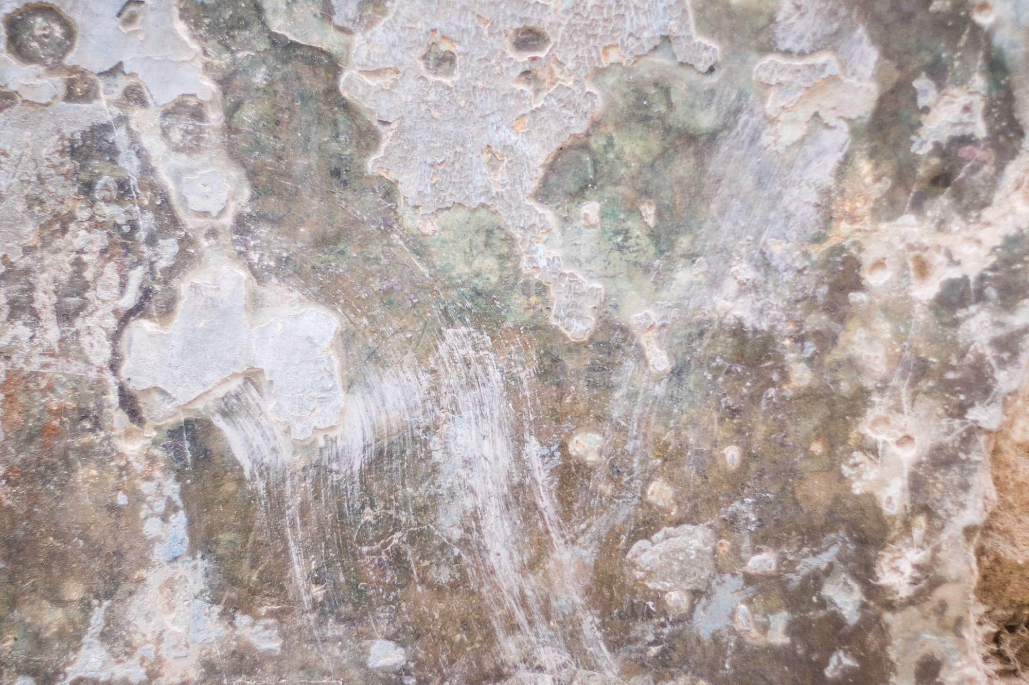 Lush layers of chipped paint and plaster create gorgeous abstractions.