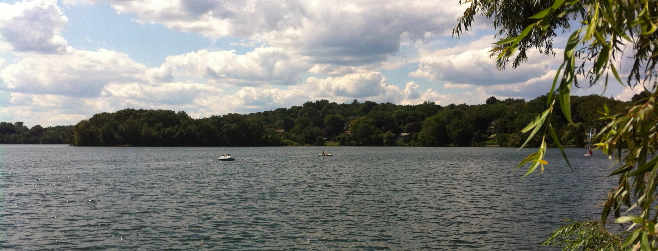 Spy Pond ~ August 16, 2013