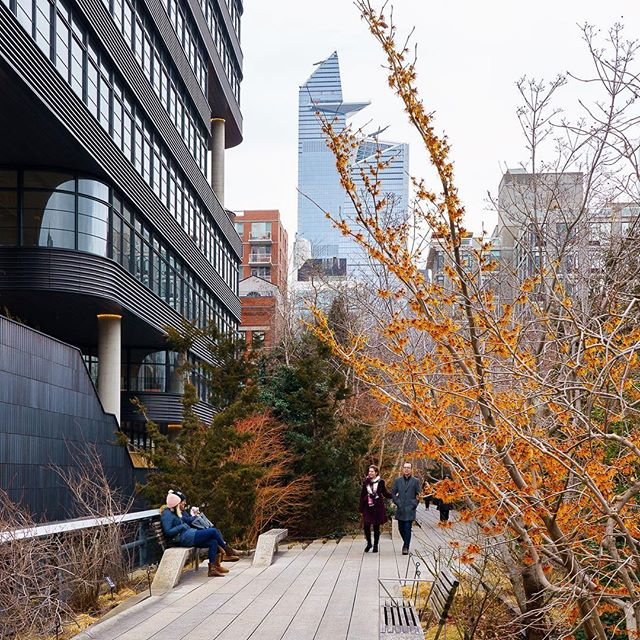 • • • • • #newyorkcity #manhattan #ny #ig_nycity #newyork_instagram #icapture_nyc #instagramnyc  #nycdotgram #newyorker #newyork_ig #seeyourcity #bigapple #igersofnyc #newyorknewyork #newyorkarea #nyc #explorenyctoday #what_i_saw_in_nyc #newyorkphoto #imagesofnyc #nycwinter #winterinnyc #nycstreets #highlinenyc #thehighline #nyclife #nycskyline #explorenyc #yesnycgo