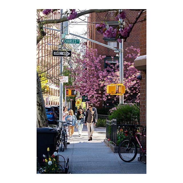 • • • • • #streetweekly #thisisnyc #nycity #nycexplorers #newyorkigers #timeoutnewyork #nycshots #shootnyc #capturenyc #nycphoto #newyorkcityphoto #instanyc #ig_newyork #nycinsta #nycviews #topnewyorkphoto #ilove_newyo #wildnewyork #fstoppers #sonyalpha #nyc #manhattan #sonya7iii #sonyalphaclub #ny #newyorkcity #streetselect #streetfinder #ourstreet #_53mm_