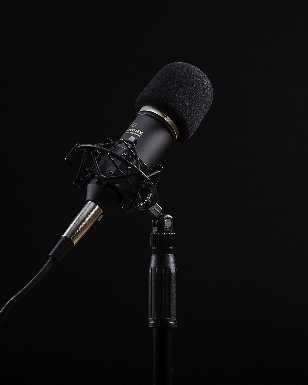 mics and table instagram.jpg