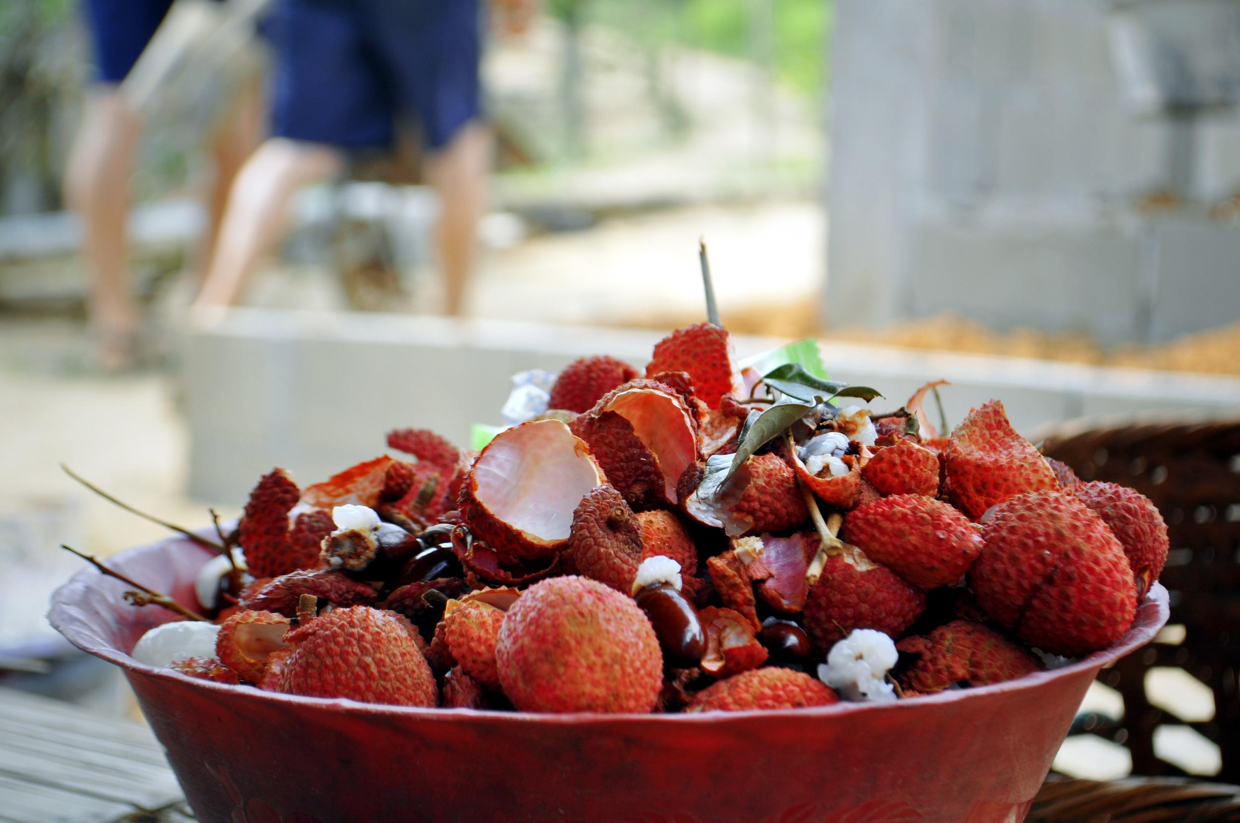 Leche fruit