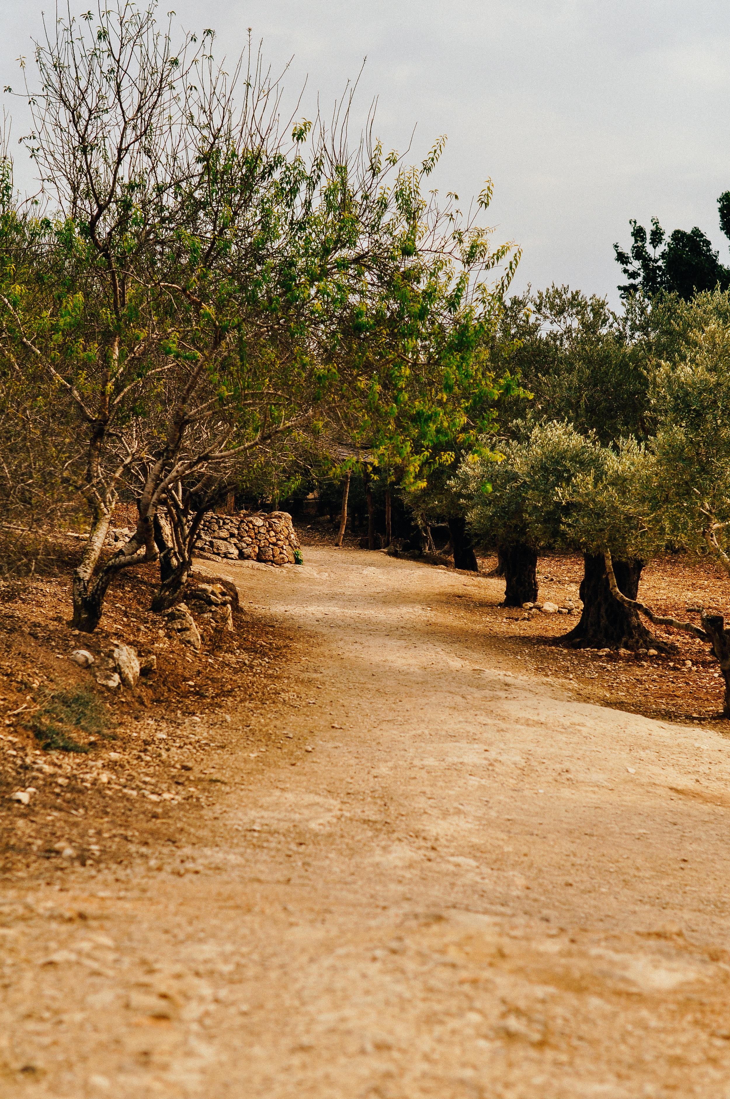 israelblog-49.jpg