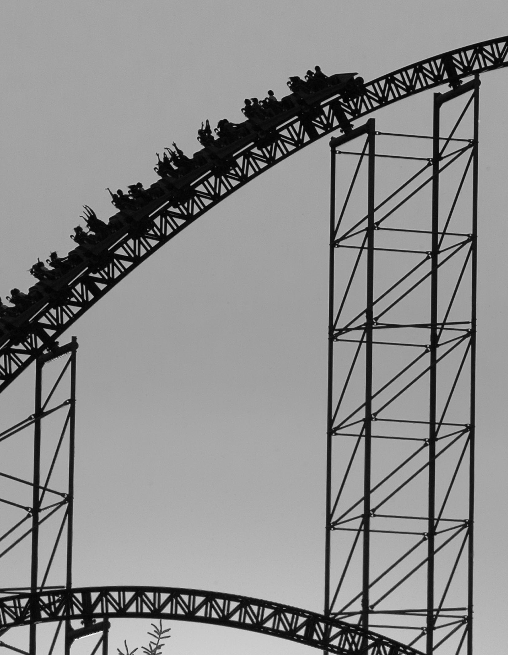 Cedar_02.jpg