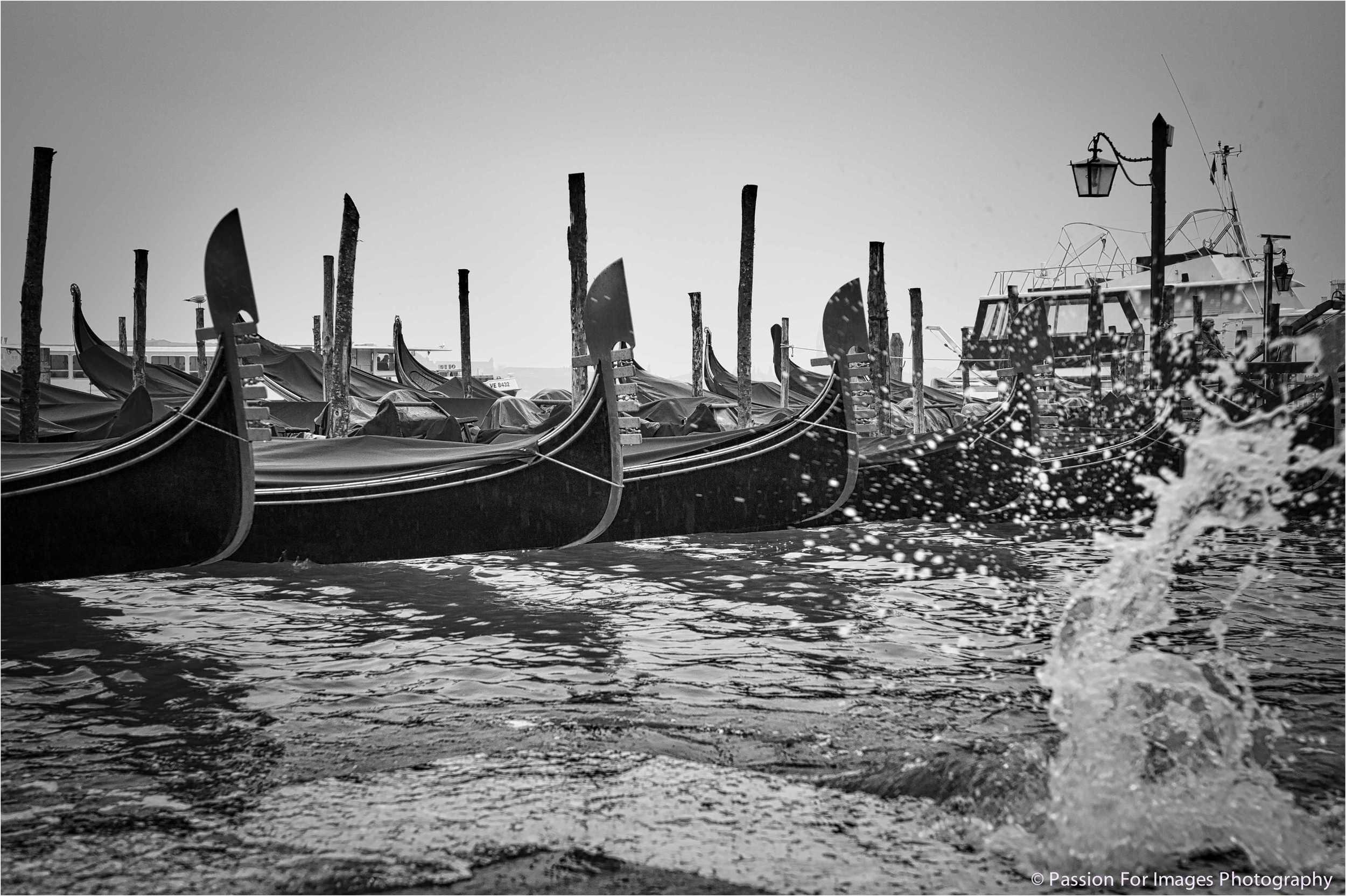 _D7C4051_2016_01_Venice-Edit.jpg
