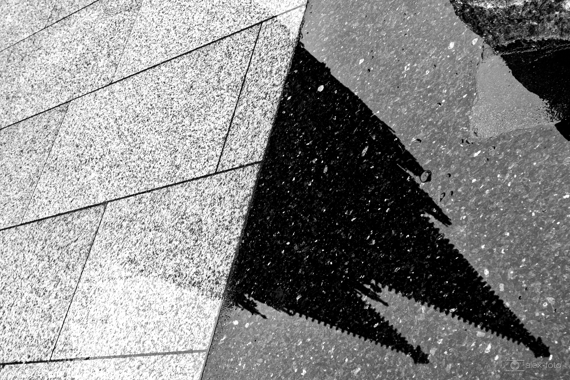 Lichtwert-BestOf_ThomasAlex_003_Kölner Dom.jpg