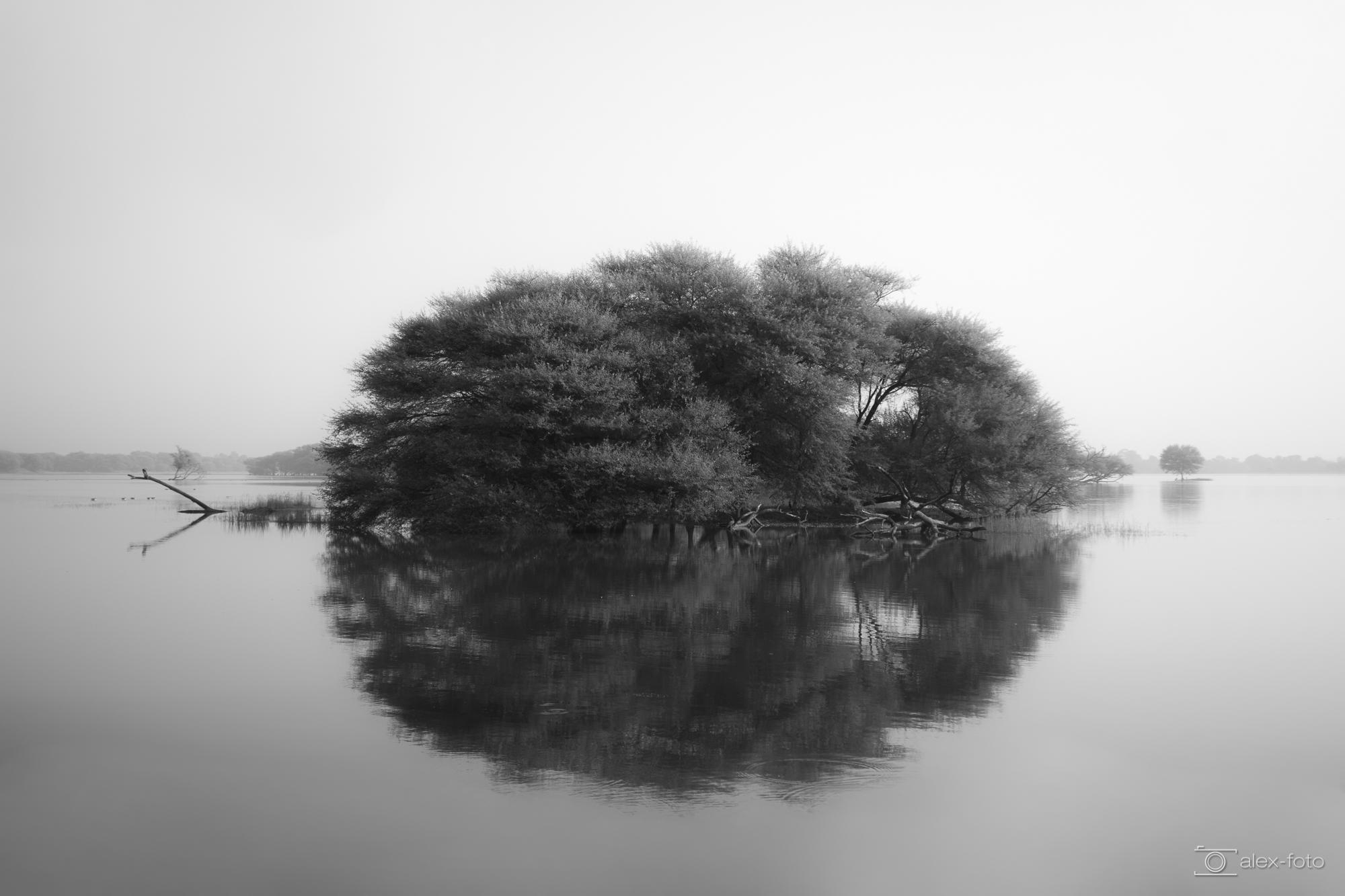 Lichtwert-BestOf_ThomasAlex_009_Ahmedabad - Thol Lake.jpg