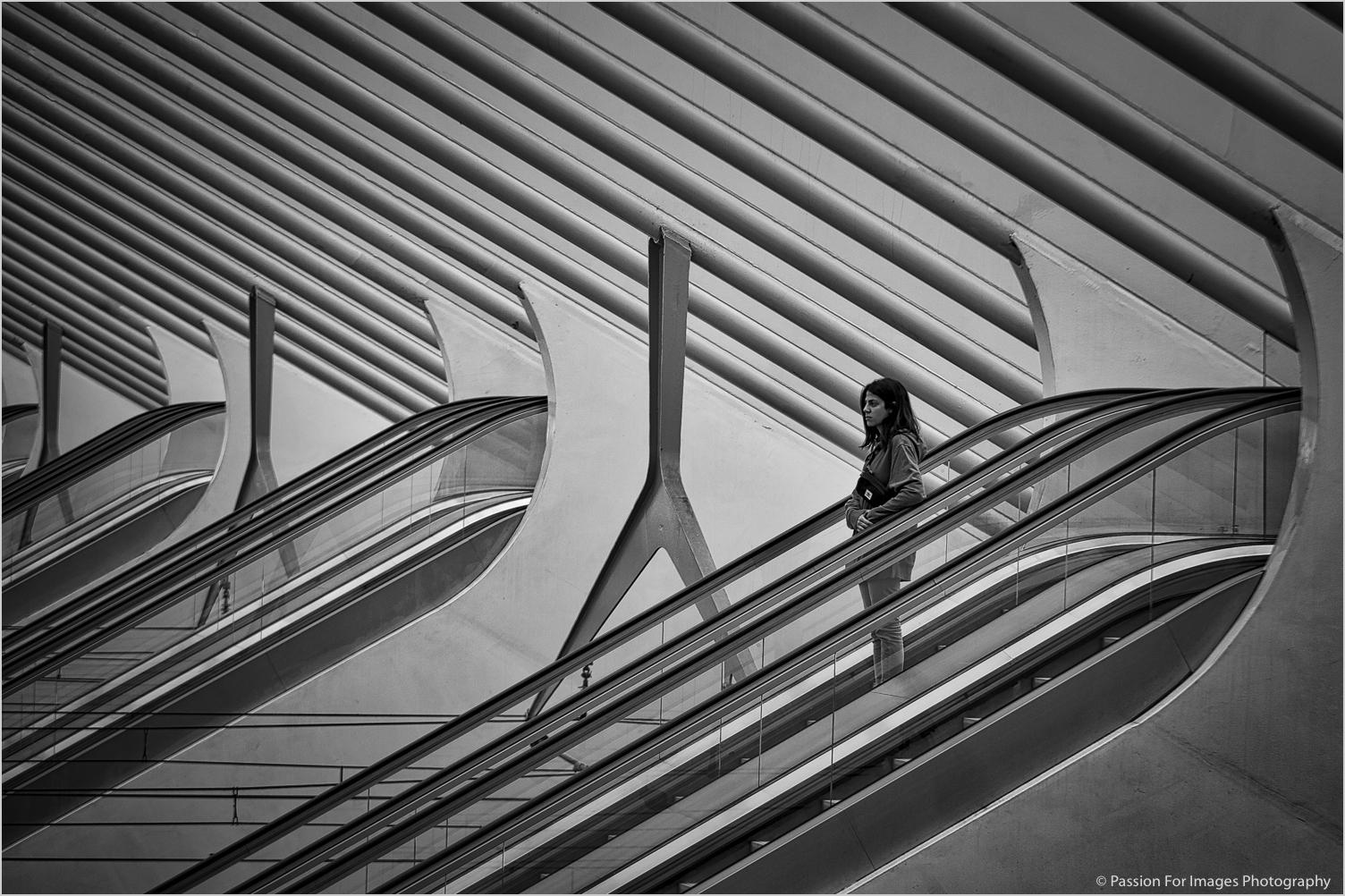 _D7C1391_2019_06_Belgien-Edit-2-Edit-2-Print-Full-JPEG.jpg