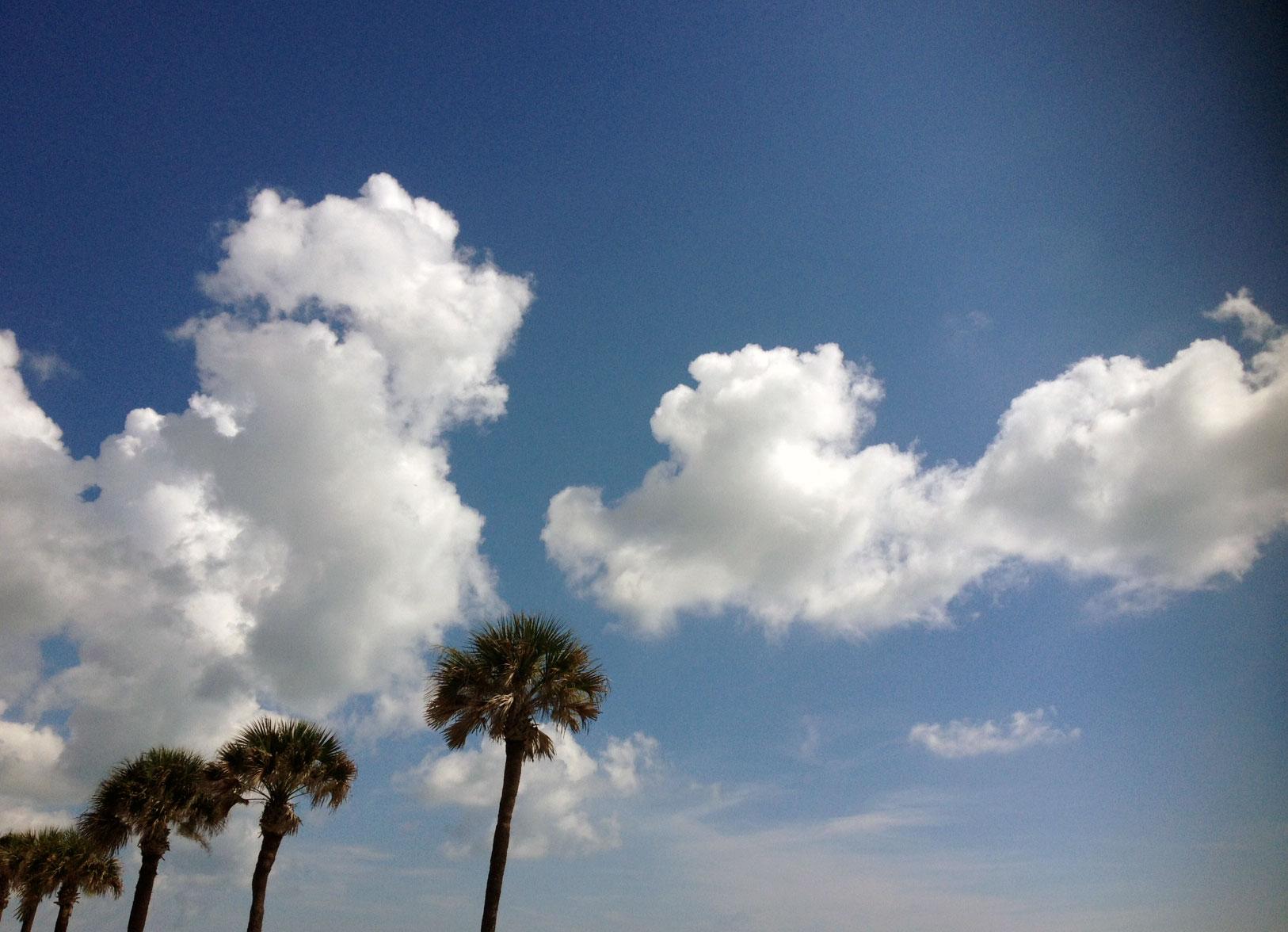 Florida Sky / Second Floor Flat