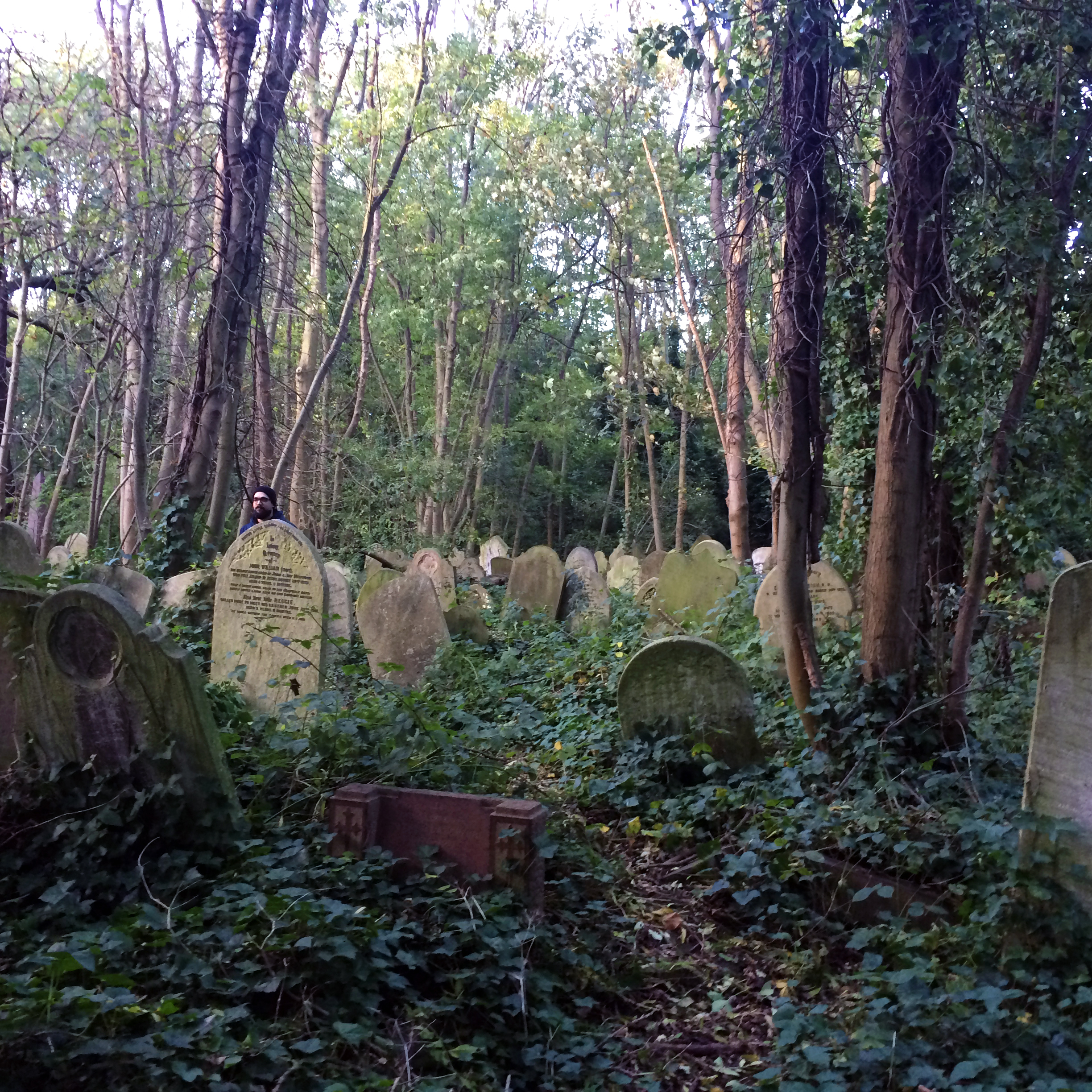 5 Things To See In London / Abney Park // Second Floor Flat