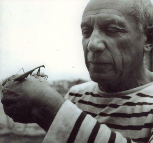 Pablo Picasso with Grasshopper