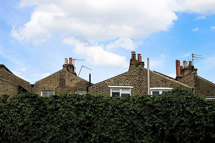 rooftops in Stoke Newington