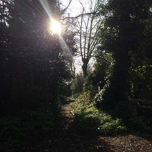 Abney Park, London