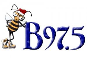 B-Christmas-Large-300x201.jpg