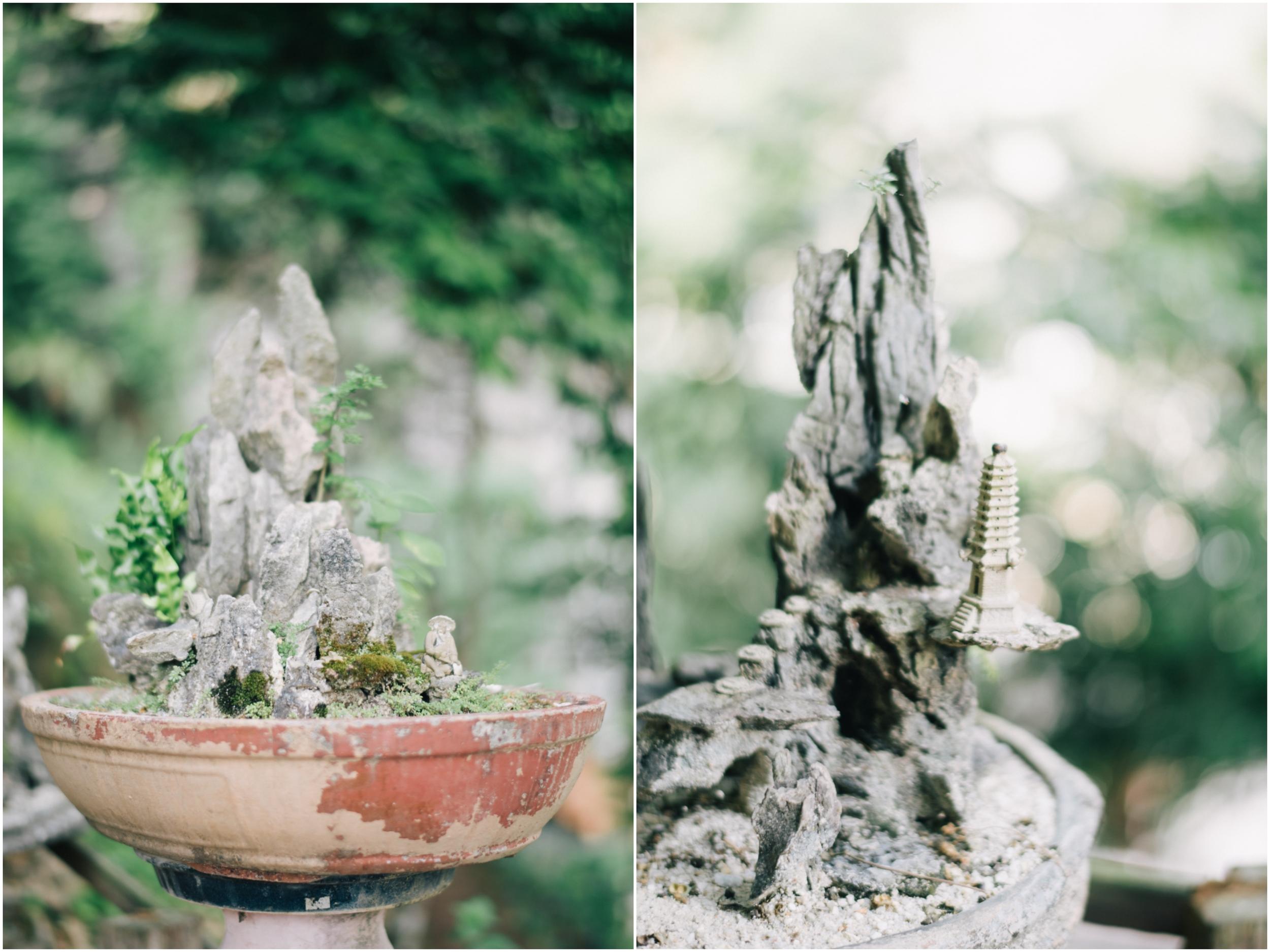 Collage_Fotorvrvr.jpg