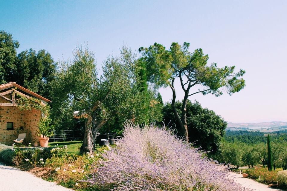 Grounds at Poggio Piglia.
