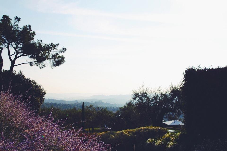 The beautiful manicured grounds of Poggio Piglia.