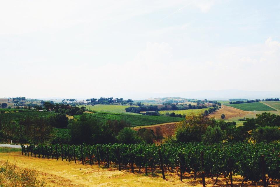 Road to Cortona from Chiusi.