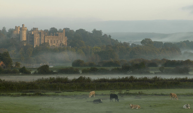 Early morning mist at Arundel Castle. (Photo from www.arundelcastle.org)
