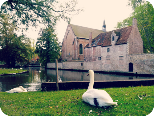 Tranquility outside the  Beguinage  Ten Wijngaerde.  © Eileen Hsieh