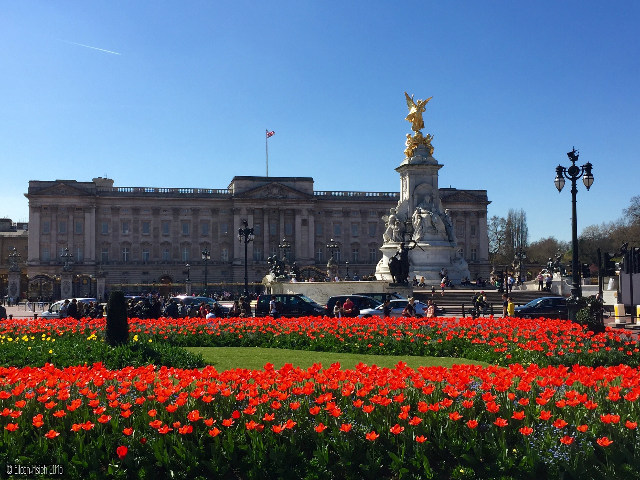 A sea of red tulips at Buckingham Palace. 白金漢宮的鬱金香花海。 © Eileen Hsieh