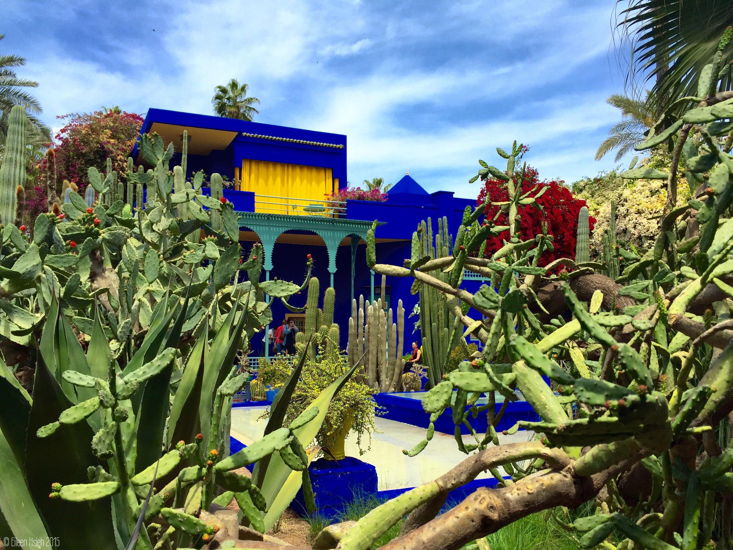 An oasis outside of the maddening medina,Jardin Majorelle is a top tourist attraction in Marrakech.Jardin Majorelle 馬若雷爾花園是城市裡的綠洲,也是旅客的最愛。