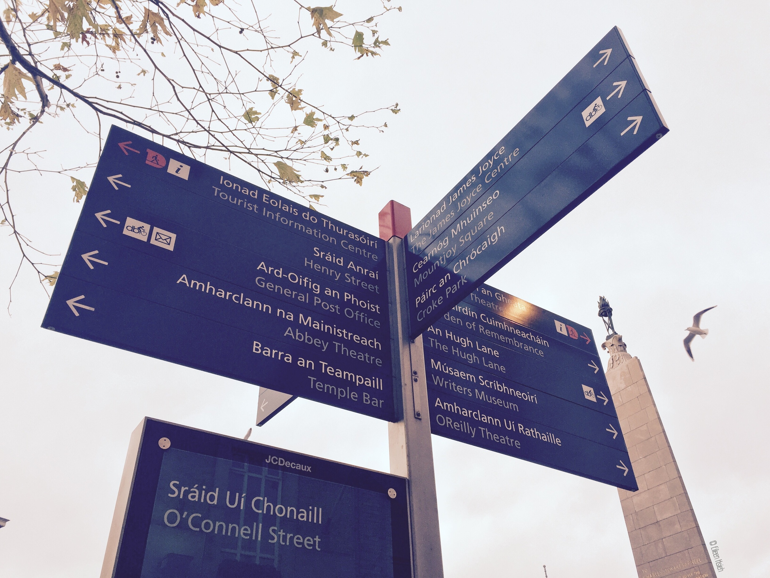 Irish Gaelic and English are the two official languages of Ireland and can be found on most signs.