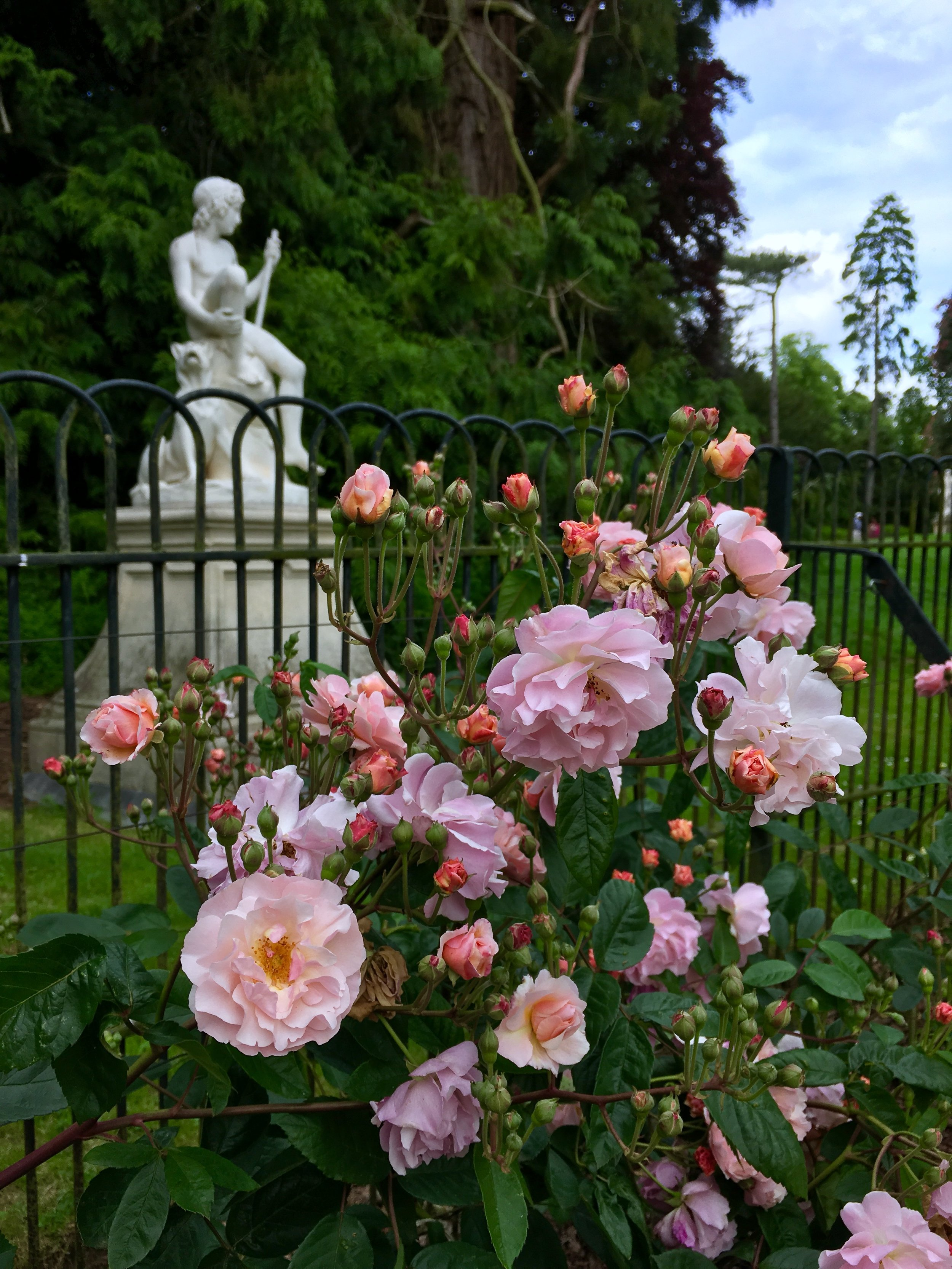 UK Waddesdon Manor rose garden 2 National Trust French Chateau Rothschild Buckinghamshire garden chateau Eileen Hsieh Follow That Bug .jpg