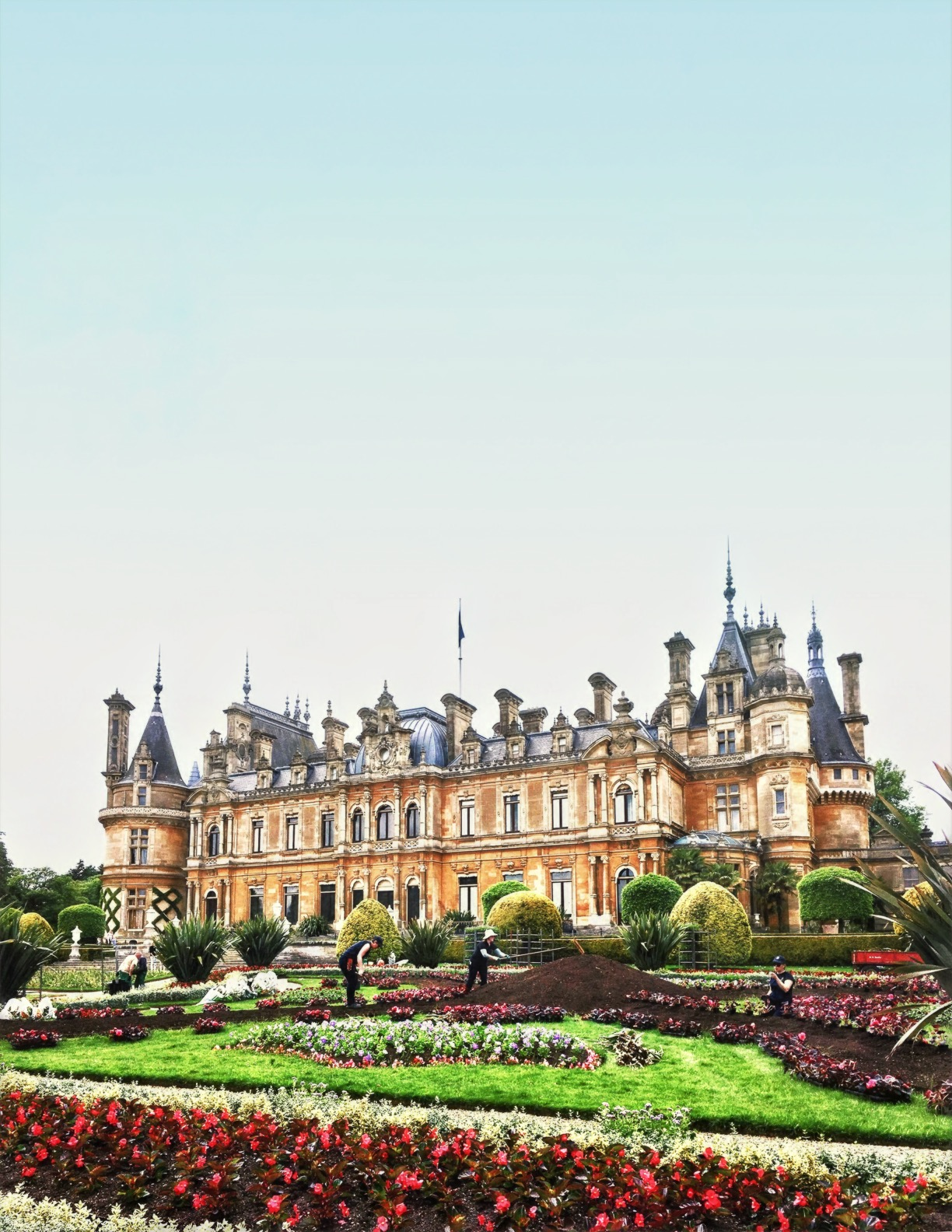 The Parterre at Waddesdon Manor has 50,000 plants, and the bedding is usually changed twice a year, in spring and summer. © Eileen Hsieh / Follow That Bug