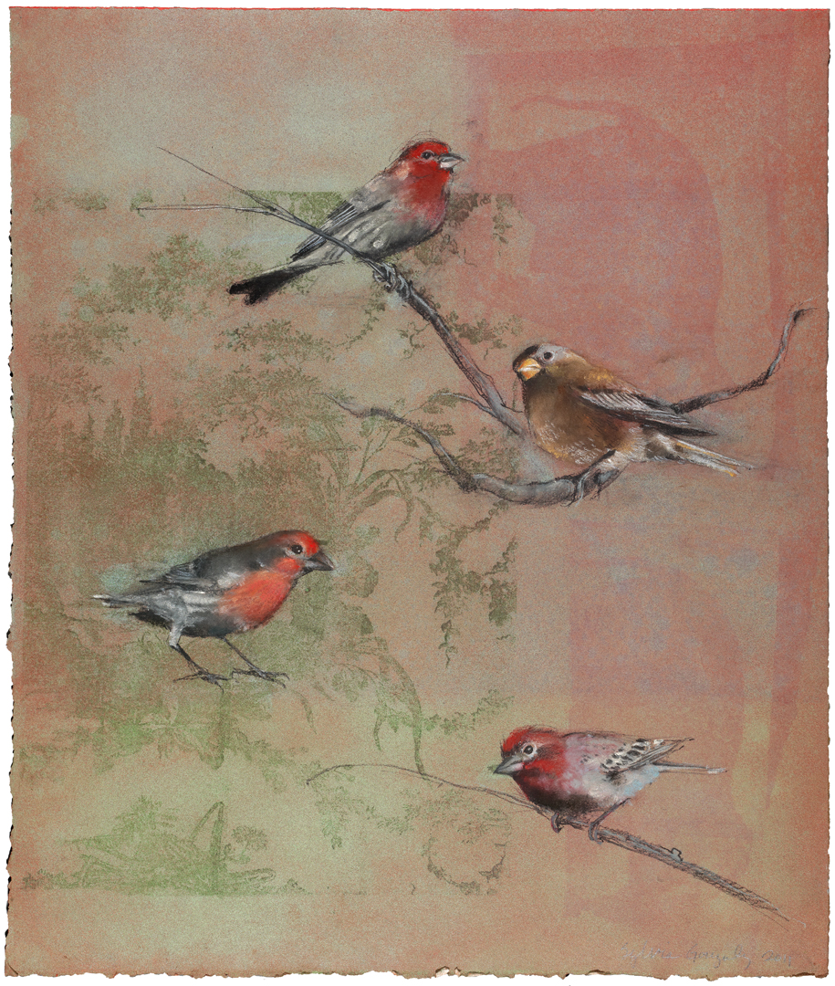 Finches on Toile