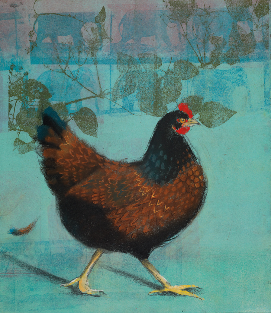 Chicken on Turquoise #13