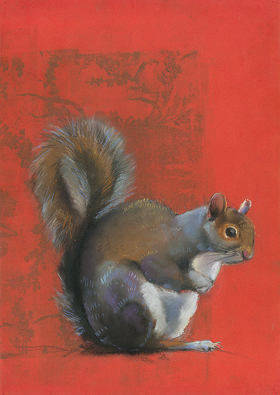 Squirrel on Red
