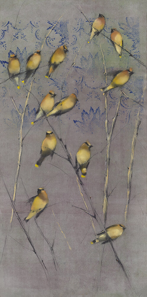 Cedar Waxwings in Tree