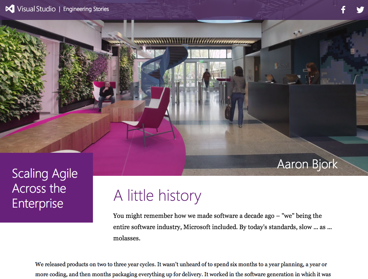 Screenshot taken from http://www.microsoft.com/visualstudio/stories/scaling-agile-across-the-enterprise/