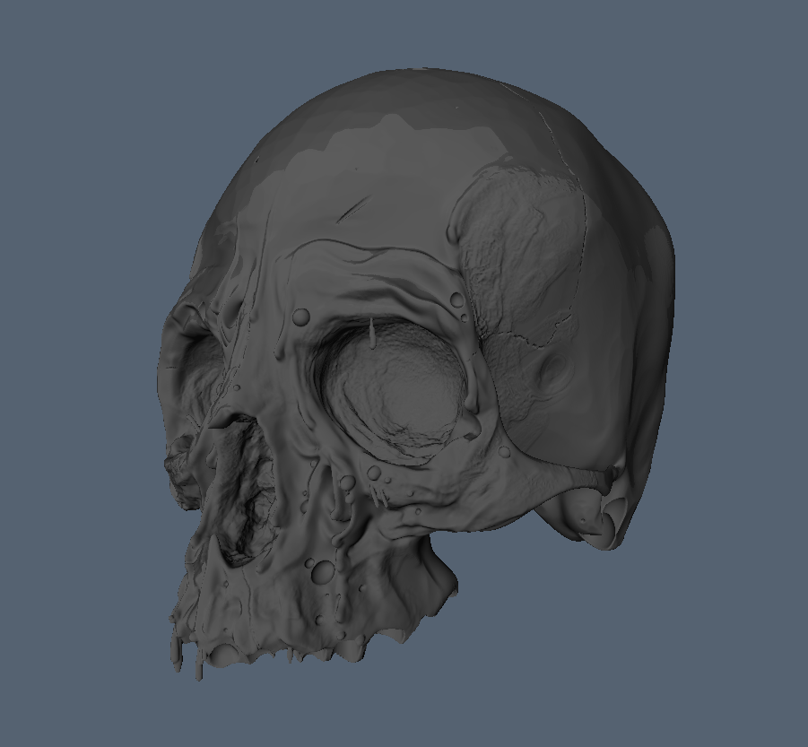 3DCoat_Skull.png