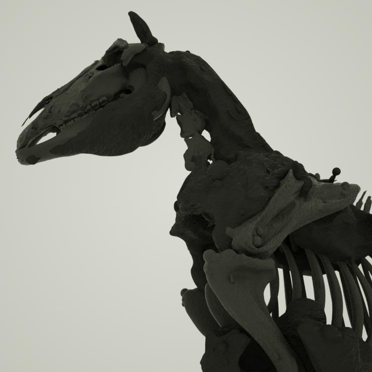 Octane_Horse.png
