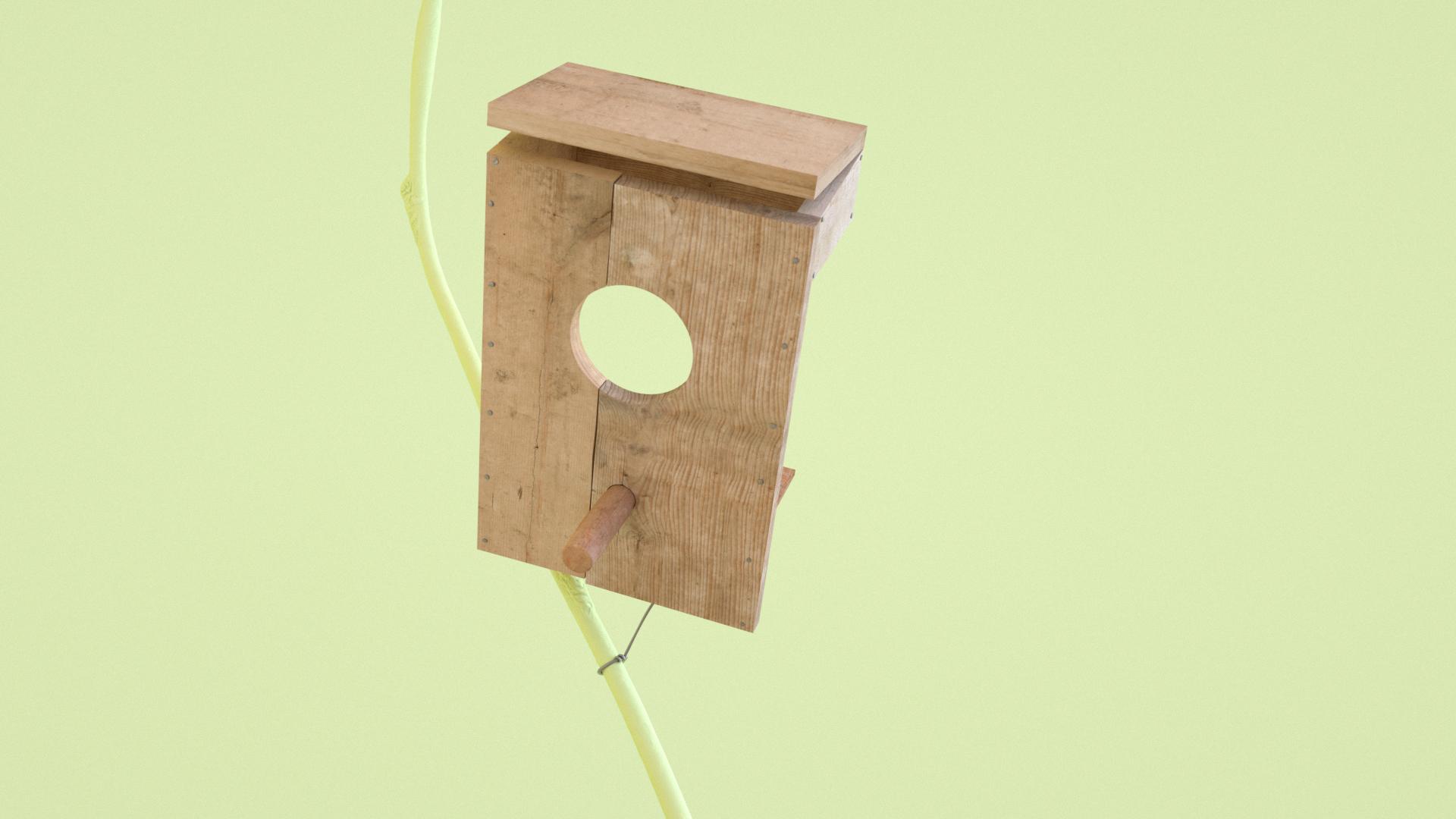 Birds_Box.jpg