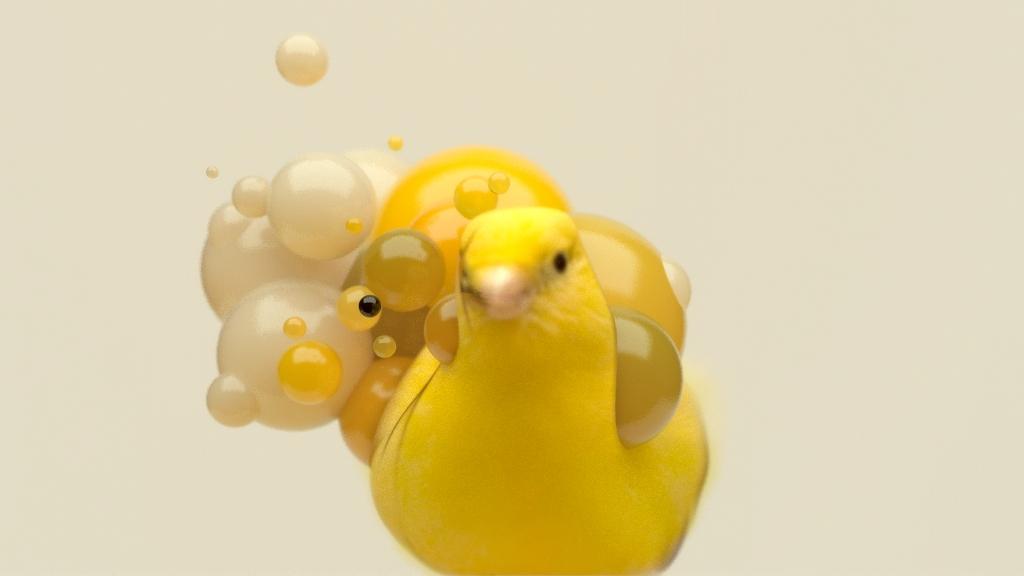 Bird yello0001.jpg