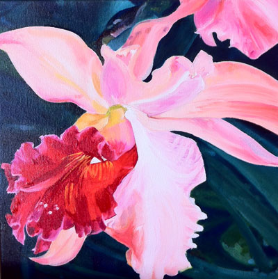 Work-in-progress - Pink orchid - oil paints on canvas (12x12 inches)