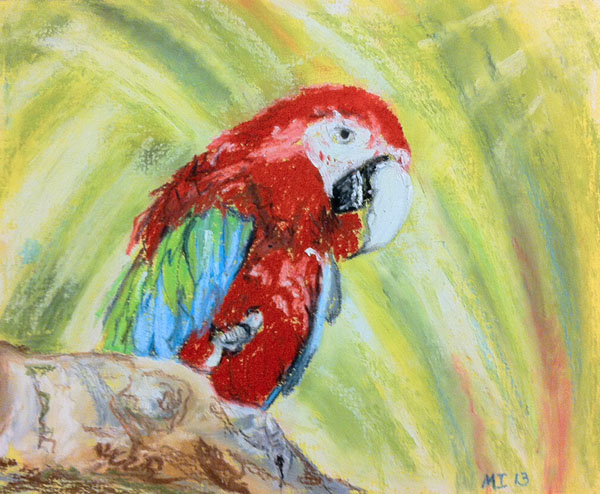 Macaw - oil pastels on matboard (approx. 8 x 10 inches)