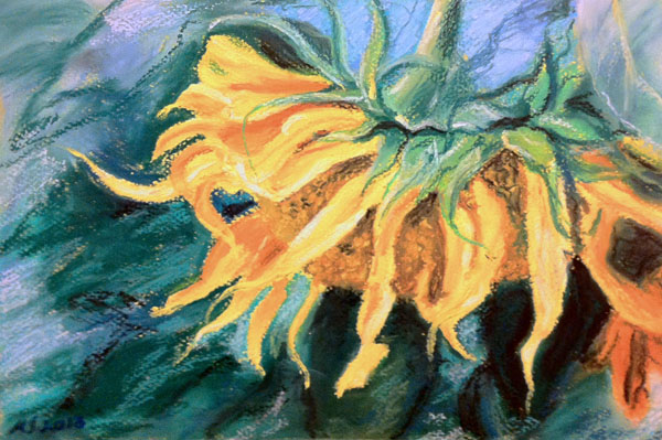 Sunflower - oil pastels on matboard (approx. 8 x 12 inches)