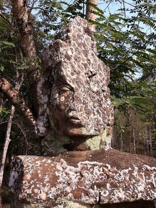 Angkor head.jpg