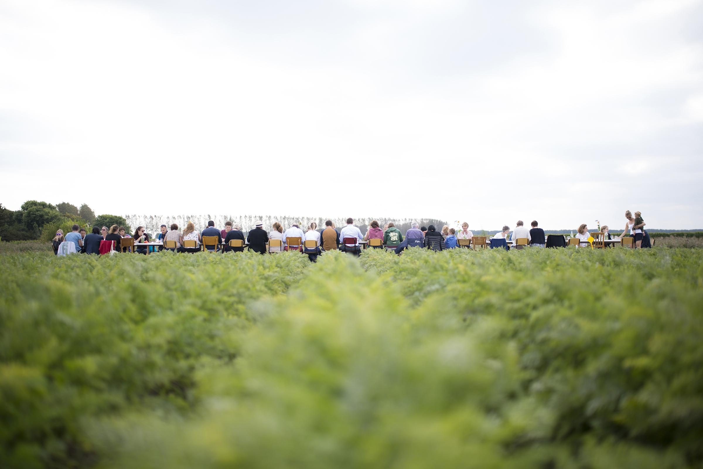 Harvesting & Dining in the Field i.c.w. Eatmosphere.JPG