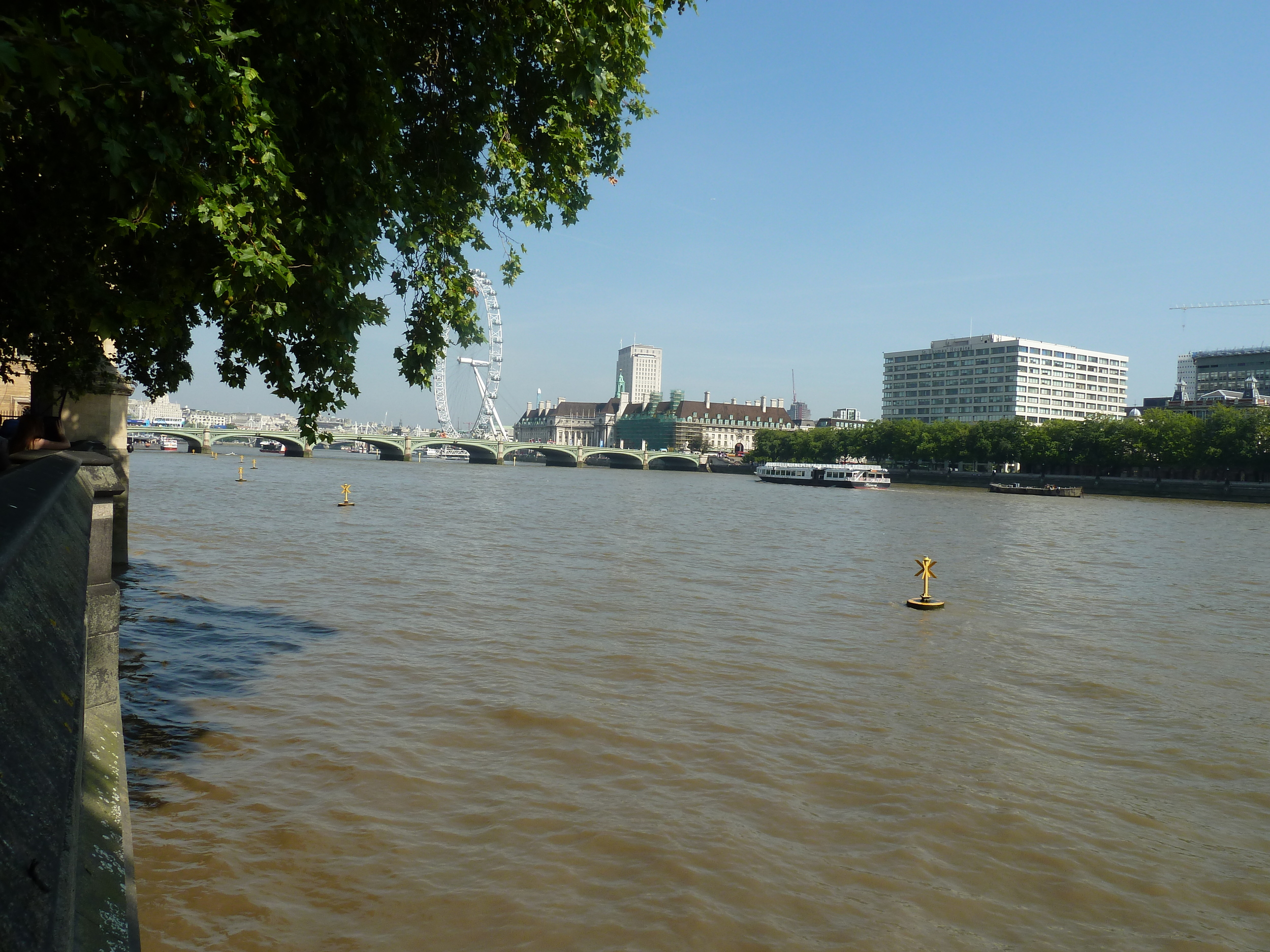 The Thames from Victoria Tower Gardens