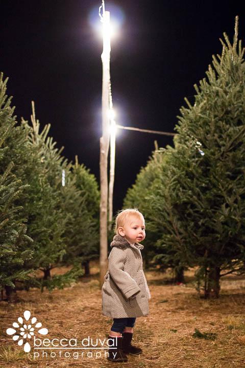 ChristmasTreeHunt (3 of 8).jpg