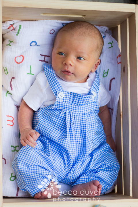 How precious is this romper  Merri Poppins  made for Everett's 1 month photos?