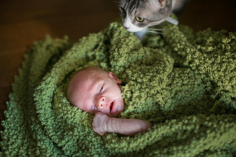 newborn-hires-008.jpg
