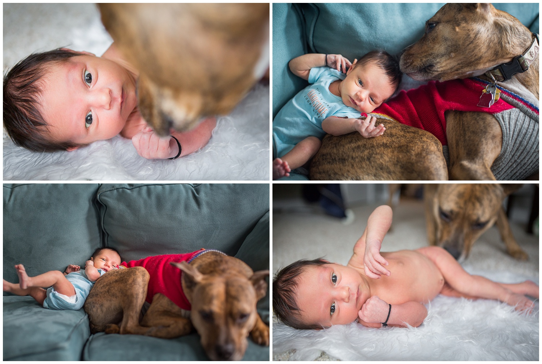 durham-newborn-photographer-006.JPG