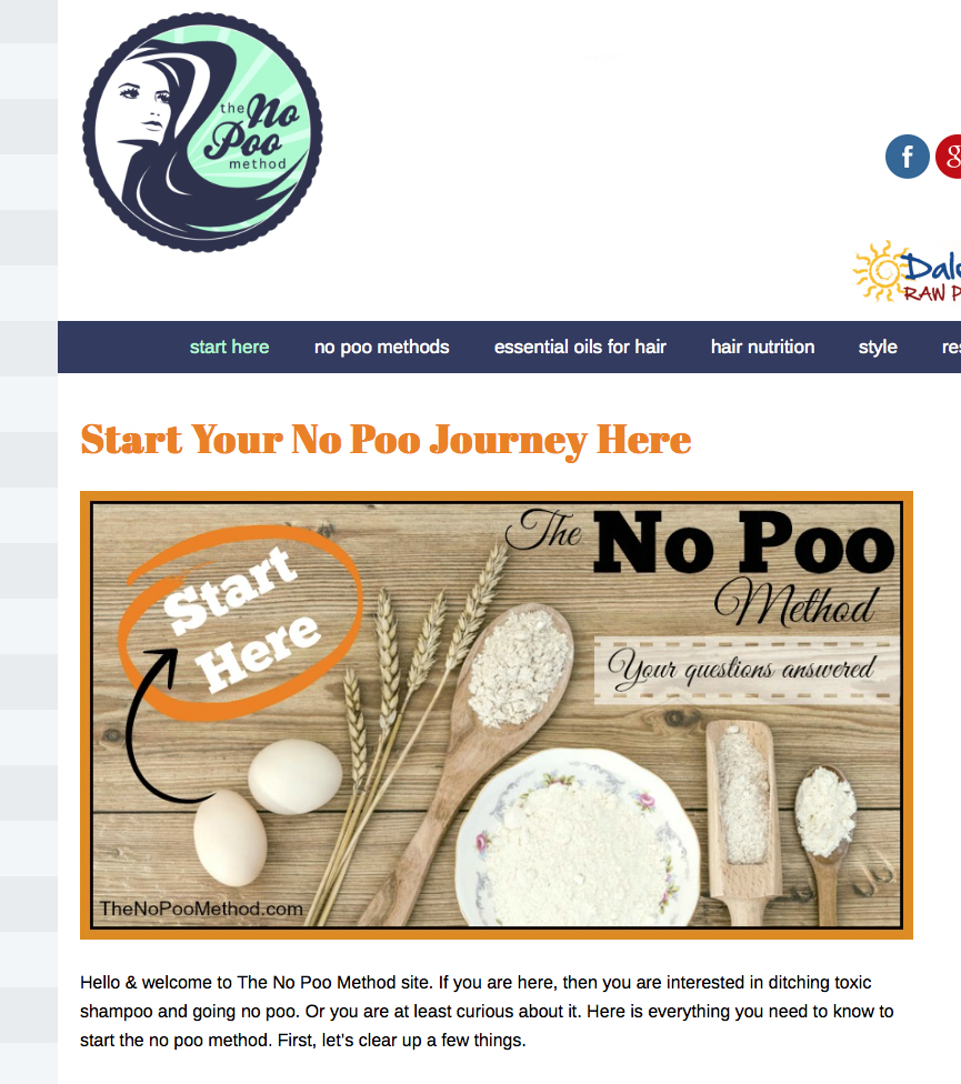 Screenshot of the No Poo Method website where you'll find lots of detailed information for skipping out on your commercial shampoo and conditioner.