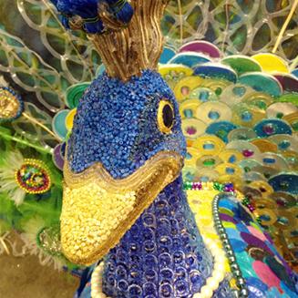 Peacock 3 head close up.jpg